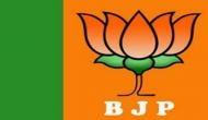 Rahul Gandhi elevated not on performance: BJP