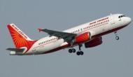 एयर इंडिया का विमान कर रहा था लैंडिंग, तभी रनवे पर दिखे आवारा कुत्ते और फिर...
