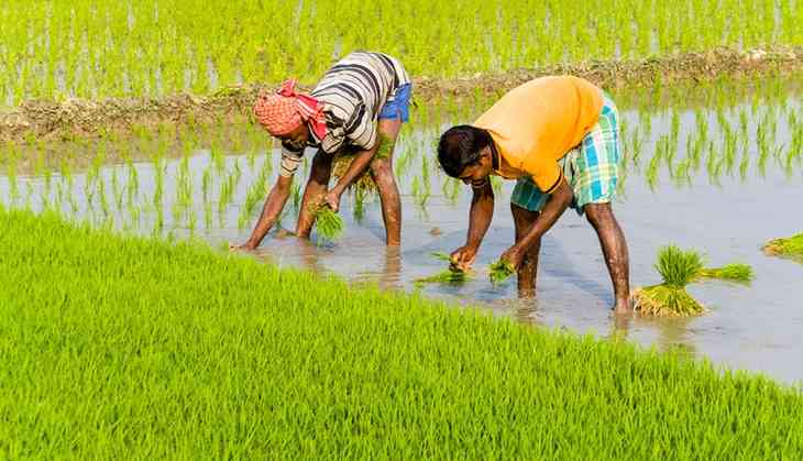 Mamata govt waives off tax on agricultural land in Bengal