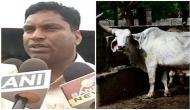 छत्तीसगढ़: 250 गायों की मौत के मामले में 9 अफसर निलंबित