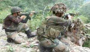 जम्मू-कश्मीर: कुपवाड़ा में सुरक्षा बलों ने दो आतंकियों का किया एनकाउंटर, लूटी गई इंसास राइफल बरामद