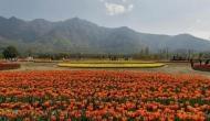 Jammu and Kashmir: High-tech poly houses boost floriculture sector
