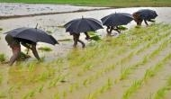Parijat launches agrochemical products to reap benefits of good monsoon