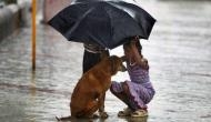 Be it Mumbai or Texas, they stood by their four-legged friends even in deluge