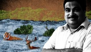 Gadkari gung-ho about linking rivers. But experts aren't amused