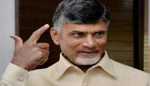 Andhra CM Chandrababu Naidu to finalise designs for Assembly, HC on 25 October