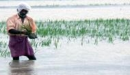 Floods in north and shortage of rainfall in southern states to affect Kharif output: ASSOCHAM