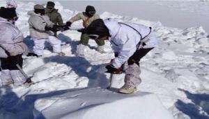 'Game of Volleyball at 16K ft': Despite tough conditions, ITBP Jawans enjoy life with sports, video goes viral
