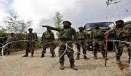J-K: One civilian dead, seven CRPF personnel injured in grenade attack