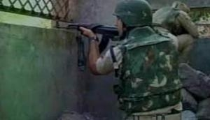 Two Naxals killed in encounter with police in Chhattisgarh's Dantewada district