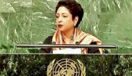 Will think about dealing with fake photos, says UNGA president after Pakistan's picture gaffe