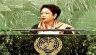 Pakistan has made fool out of itself: former diplomats rebuke Maleeha Lodhi