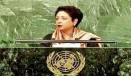 Pakistan has made fool out of itself: former diplomats rebuke Maleeha Lodhi