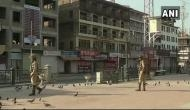 J-K: Kashmir traders' body calls for bandh after its head summoned by NIA