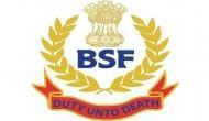 BSF ने कहा- पाकिस्तानी ड्रोन ने राजस्थान सीमा में किया प्रवेश