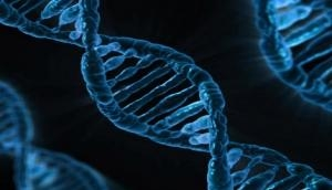 Scientists find cause of autism in 'junk' DNA