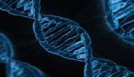 DNA damage caused by cancer treatment reversed by ZATT protein
