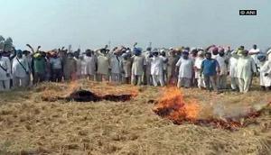 Punjab farmers burn stubble to protest prohibition orders