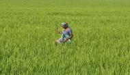 राजनाथ सिंह- किसानों को उनकी कीमत कभी नहीं मिली, पीएम मोदी ने इसे समझा