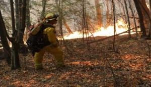 तमिलनाडु: जंगल की आग में फंस गए ट्रैकिंग पर गए छात्र, एयरफोर्स ने 15 छात्रों को बचाया