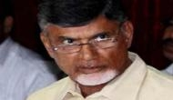 Chandrababu Naidu on Arnab Goswami attack: People should refrain from 'unnecessarily targeting' journalists