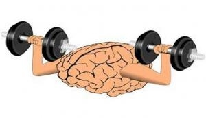 'Selfish brains' take priority while competing with muscle power