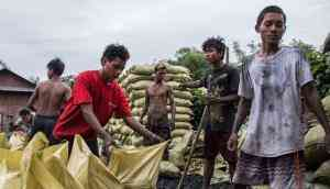 Burning down the house: Myanmar's destructive charcoal trade