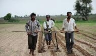 Herbicide resistant BT Cotton behind farmer deaths in Maharashtra?