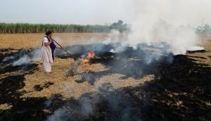 Delhi smog: Don't blame farmers, these simple policies can prevent stubble burning