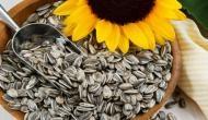 सूरजमुखी के बीज में छिपे हैं बेशुमार फायदे