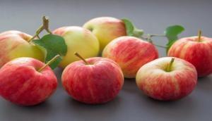 Soon, better performing disease-resistant apples