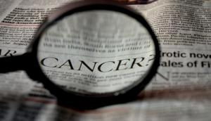 Why testicular cancer is so responsive to chemo