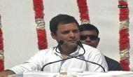 BJP calls Rahul Gandhi 'immature shehzada' for math blooper