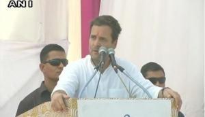 PM Modi finalised Rafale deal on his own, says Rahul Gandhi