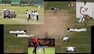 दिल्ली से पहले भी दुनिया में इन वजहों से रोके जा चुके हैं क्रिकेट मैच