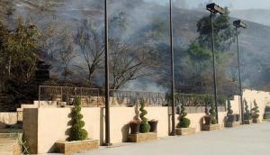 Wildfires scorch homes in LA's affluent neighbourhood