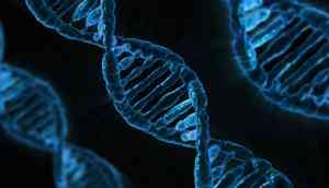 You've got your DNA kit: Now what can you do with it?