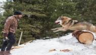 Here's how 'Tiger' Salman Khan hunts for wolves in new still