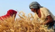 सरकार से नाराज़ किसानों ने किया गांव बंद का ऐलान, शहर नहीं भेजेंगे सब्जी-दूध-फल