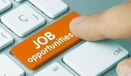 सरकारी नौकरी: बिना परीक्षा के मिलेगी नौकरी, निःशुल्क करें आवेदन
