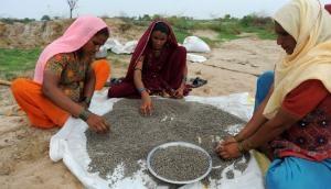 Farm crisis & demonetisation: Why BJP got a thrashing in rural Gujarat