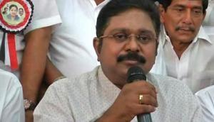 Supreme Court stays trial court proceedings against AMMK leader TTV Dhinakaran