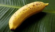 छिल्के समेत खा सकते हैं यह केला, कीमत जानकर चौंक जाएंगेे आप