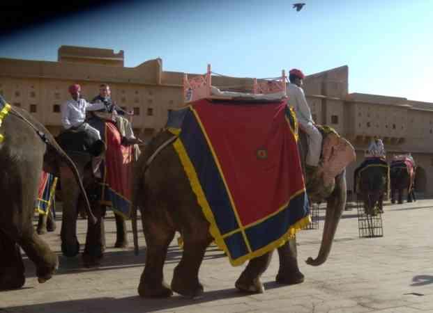 Year-end tourism: Rajasthan's Big Haul