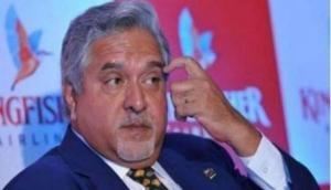 Vijay Mallya denies 'plea bargain' allegations