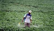 A pest gene can help fight pesticide contamination in environment: Study
