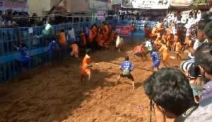 Jallikattu: 19-year-old gored to death by bull