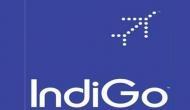 IndiGo का दिवाली धमाका, मात्र 899 में हवाई जहाज से जाइये रिश्तेदारों के घर