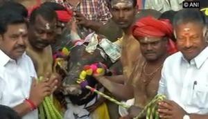 Tamil Nadu CM, Deputy CM reaches Madurai for Jallikattu event
