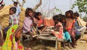 These boys take care of  Mahasweta Devi's Sabars
